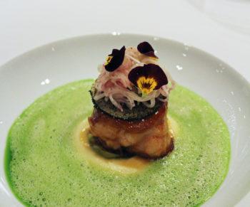 Aqua-Nedersaksen-Would-Be-Chef-22