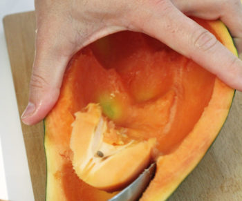 Supergezonde smoothie met papaya venkel limoen en gember Would Be Chef
