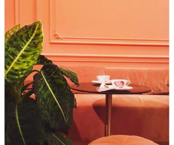 TREND: 5 roze restaurants~mv2
