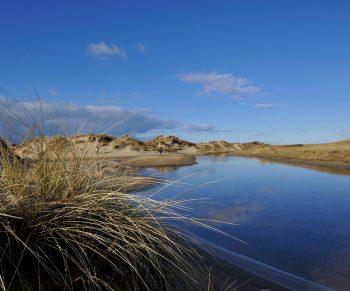 duinen-slufter-VVV-Texel