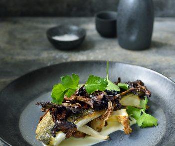 39.zeebaars met bospaddenstoelen en aardappelcreme 2 JT
